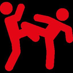 Fight Nation est la première plateforme numérique exclusivement dédiée aux <b> sports de combat </b>